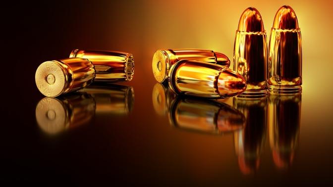 Gun Control: Preserve our Future Generation instead of Past Amendments