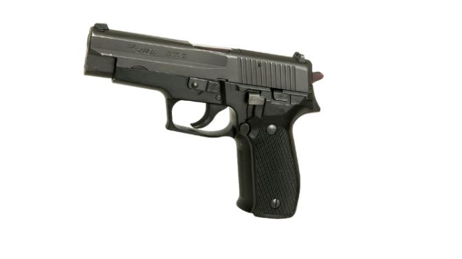 Gun Control: Fire Government Officials